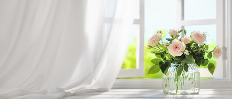 Bouquet of rose flowers near window with curtain.|Young woman cleaning the house.